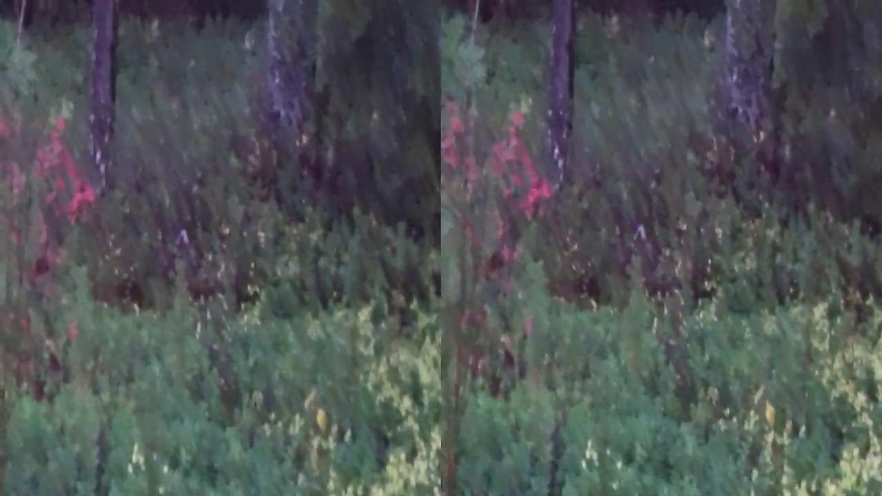 4D SÄÄ 12.10.2017 SAUNAVAARA 3D VIDEO - YouTube