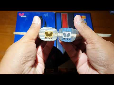 Butterfly LIN Gaoyuan ALC  VS Viscaria Golden  Compare Review  EP.2   Pingpongthaibaan