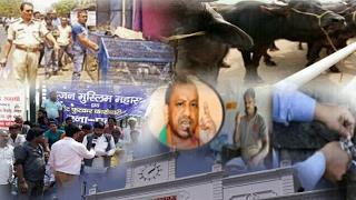 मुर्गा मीट की दुकान बन्दी के विरोध में व्यापारियों का धरना प्रदर्शन.........