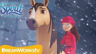 The Storm | SPIRIT RIDING FREE