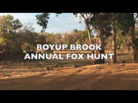 Boyup Brook Annual Fox Hunt