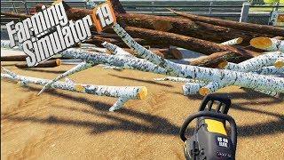 Farming Simulator 2019 Timelapse l Old Streams Farm #17