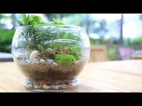 Miniature Gardens - DIY Terrarium