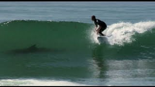 Kolohe Andino: Shark or Dolphin? + Jordy Smith and Mick Fanning Shred Fest!