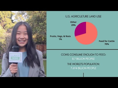 Kayla Ling's CEC Film Festival Submission - We Have a Climate Crisis: Who's to Blame?