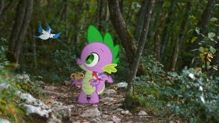 The Forest - MLP in Real Life Music Video