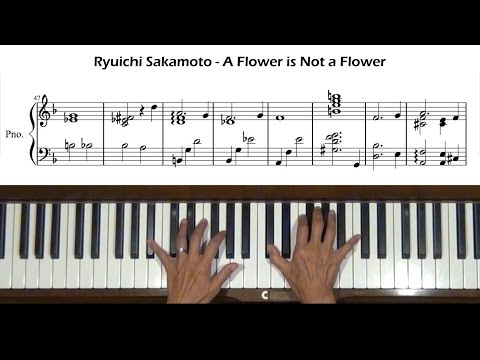 Ryuichi Sakamoto A Flower is Not a Flower Piano Tutorial