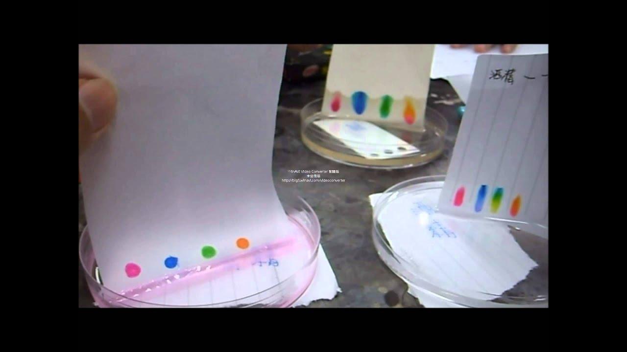 紙色層分析 - YouTube