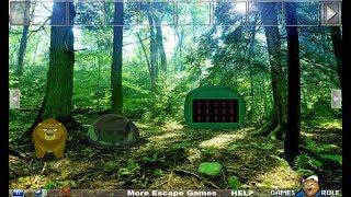 Dancing Bear Forest Escape Walkthrough [Games2Rule]