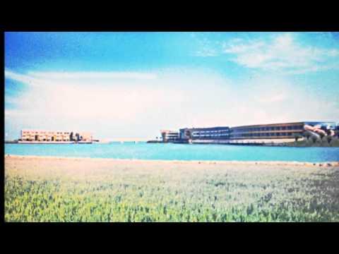 bahrain's resorts and beaches