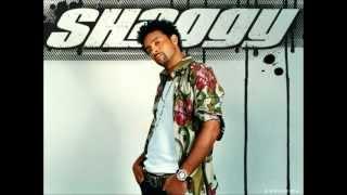 Shaggy  Ready fi di ride Remix Dj Efe jota100 BPM