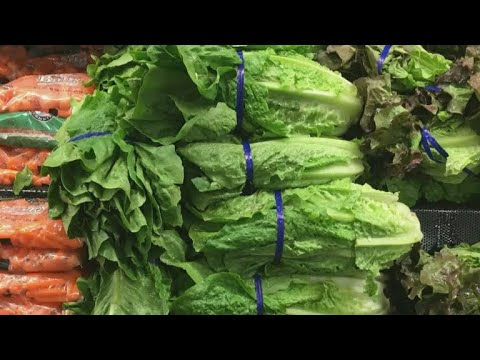 Health officials: Throw away your Romaine lettuce after E. coli outbreak