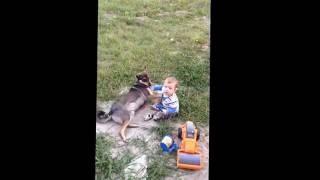 Собака любит ребенка. Лучший друг человека. Канал Карусель