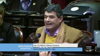 Diputado Olmedo Alfredo Horacio - Sesión 12-07-2017