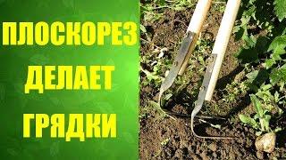 🌿 Плоскорез Фокина! Как сделать грядки. #за5минут(Плоскорез заменяет сразу несколько садовых инструментов. Работать им легко и быстро. Настоящие плоскорезы..., 2016-05-19T22:00:00.000Z)