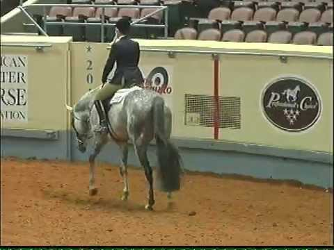 SPP Ur A Royal Spider, Kate, Video Aug 2016 from YouTube · High Definition · Duration:  1 minutes 8 seconds  · 526 views · uploaded on 21.08.2016 · uploaded by Salter Pepper Paints & Quarter Horses