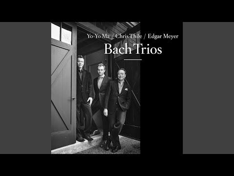 Trio Sonata No. 6 in G Major, BWV 530: III. Allegro