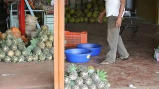 fruit market belgaum