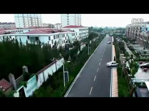 Chinese City : birds