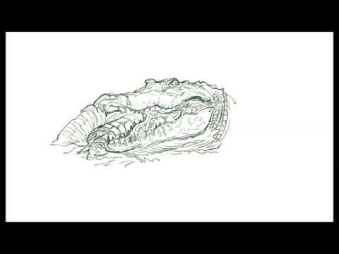 [크리티컬]드로잉 - 악어 - 그림 그리기 [Critical] Crocodile Drawing Speed Drawing