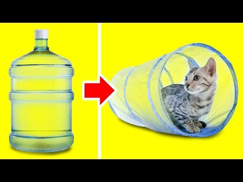 20 LOVELY DIY IDEAS FOR YOUR PETS
