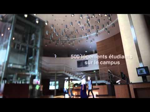 Université Paris-Sorbonne Abou Dhabi - Français