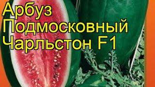 Арбуз Подмосковный Чарльстон F1. Краткий обзор, описание характеристик citrúllus lanátus