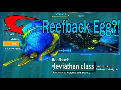 How To Get The Leviathan Class Reefback Egg In Subnautica (PC) *2018*!