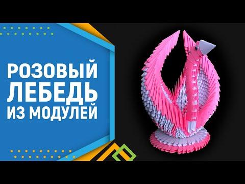Лебедь в розовом | Как сделать оригами лебедя. Модульное оригами лебедь,