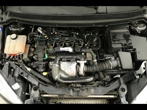 Citroen, Ford, Peugeot, Volvo, Mazda: Hvordan bytte registerreim på 1.6 Diesel (PSA/DLD-416/HDi)