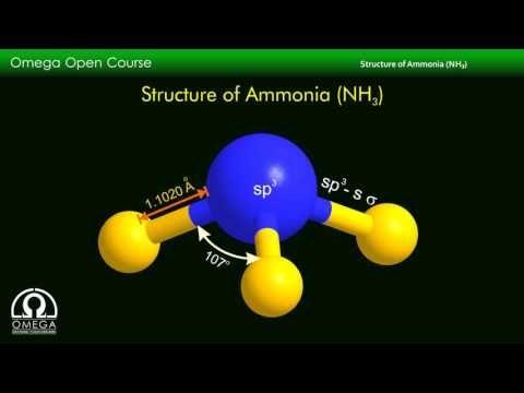 Molecular Structure of Ammonia (NH3)