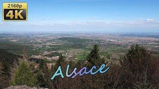 Andlau, Mittelbergheim, Mont Saint Odile (Alsace) - France 4K Travel Channel