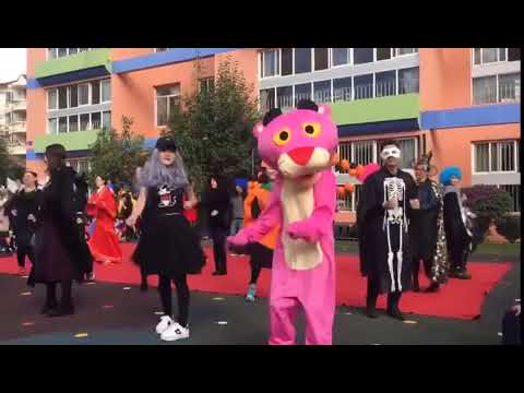 Pink Panther Mascot Costumes for Adult