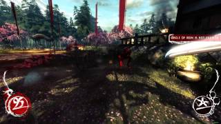 New PC Benchmark - Shadow Warrior 2013 (Max setting 1080p 60fps)