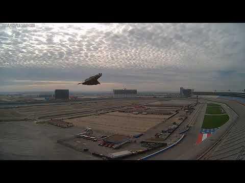 Cloud Camera 2019-02-15: Texas Motor Speedway