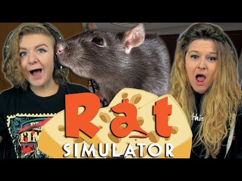 MINNIE MOUSE IRL   Girls Play   Rat Sim  