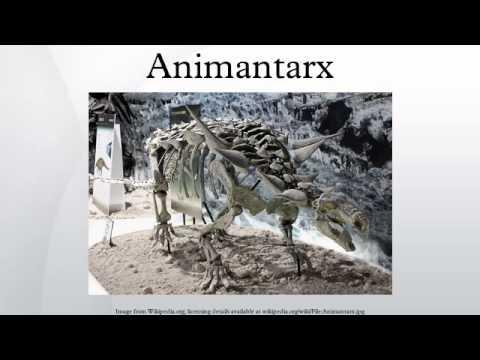 Animantarx
