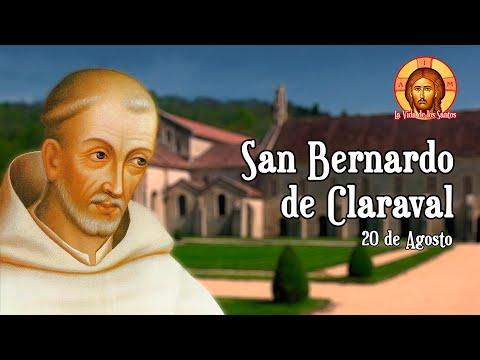 San Bernardo de