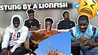 Stung By a LionFish 😱| REACTION!