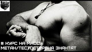 ЛУЧШИЙ КУРС НА МАССУ: МЕТАН + ТЕСТОСТЕРОНА ЭНАНТАТ(, 2014-07-20T19:07:27.000Z)