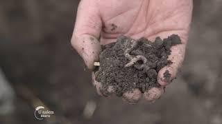 Ostatke razgradi, humus izgradi, BioPlug - U nasem ataru 744
