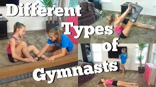 Different Types of Gymnasts with Whitney Bjerken