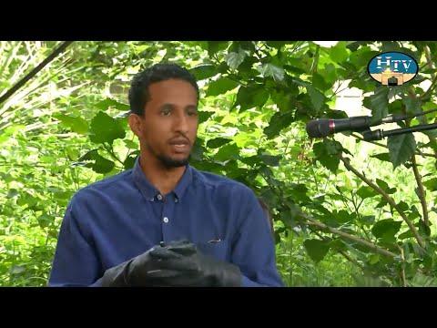 Abdurahman Yunus - Airforce