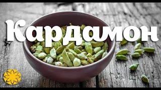 Кардамон (Cardamon) Amideya.com.ua