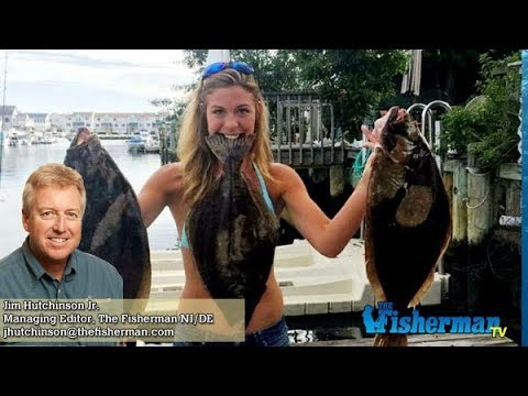 August 10 2017 new jersey delaware bay fishing report for Barnegat bay fishing report