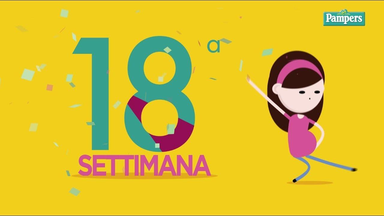 Calendario Delle Settimane Di Gravidanza.18 Settimana Di Gravidanza