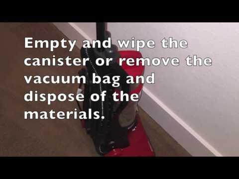 Broken CFL Bulbs: Cleanup & Disposal