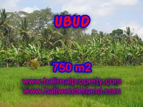 Exotic Property for sale in Bali, land for sale in Ubud Bali -- TJUB333