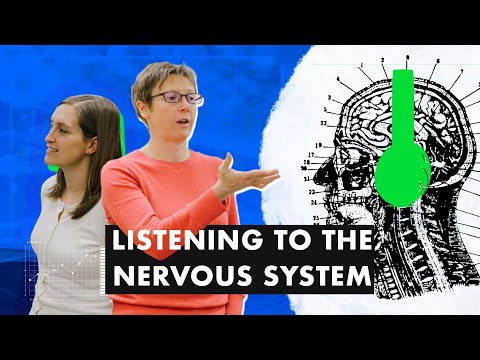 The Sympathetic Nervous System and Vascular Health   Drs. Anna Stanhewicz & Jody Greaney