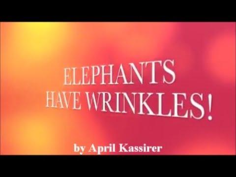 Elephants Have Wrinkles with lyrics